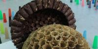 incrocio2-_-fili-e-nodi-inaugurazione-sala-valcellina-collection-opere-di-magdalena-grenda-ed-2007-e-eva-houlubikova-ed-2003