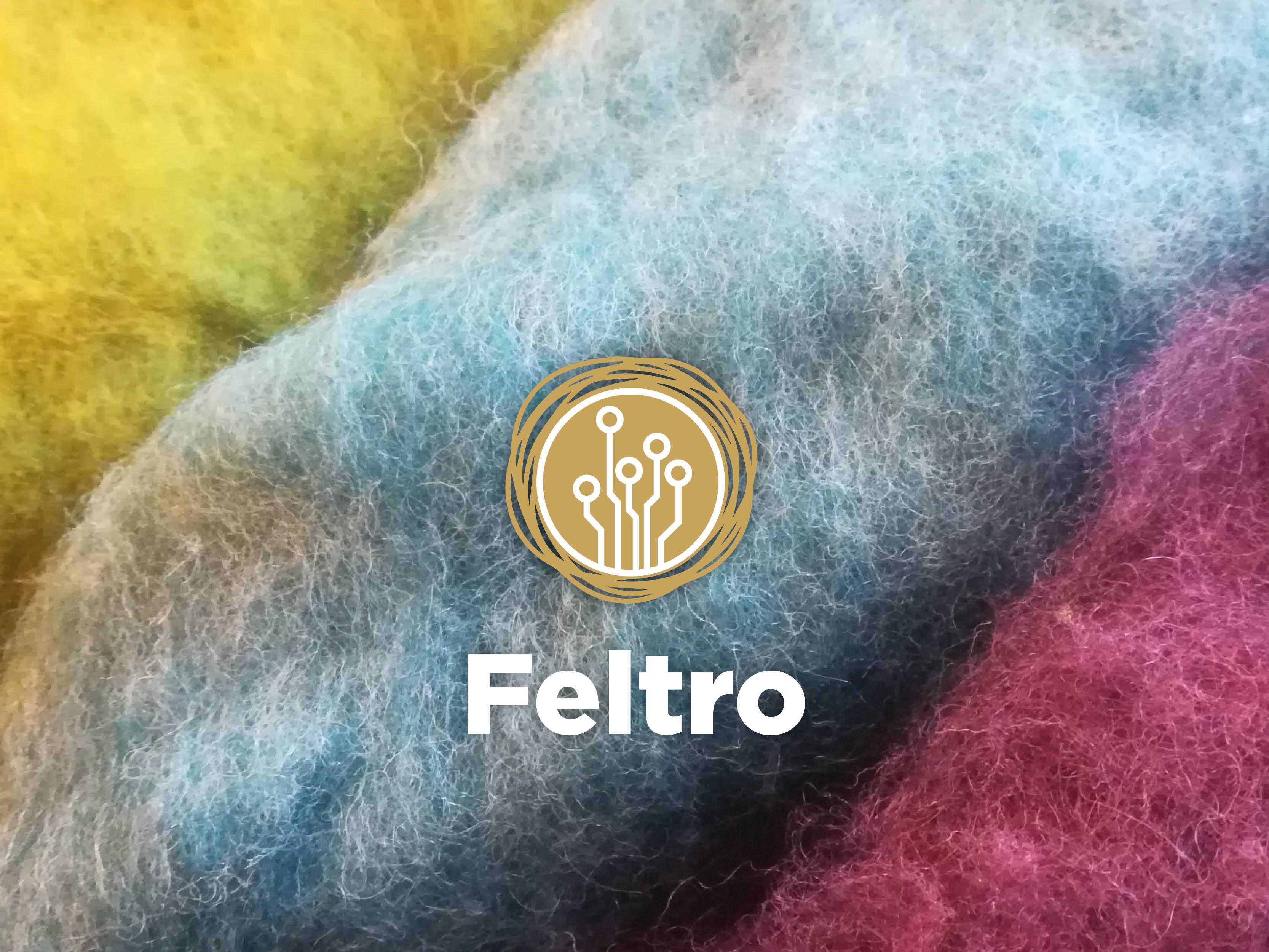 Feltro l'ancestrale lavorazione della lana 8, 9  Aprile (lunedì e martedì) a Udine - COMPLETO